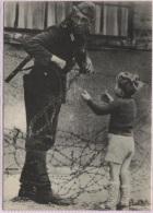 CPM - BERLIN - MUR - Photo Aout 1961 - Edition ? - Mur De Berlin