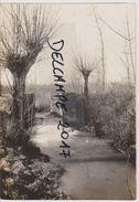 Photo  Allemande  SERAINCOURT  ARDENNES 08  MILITARIA    Guerre 1914 1918 - 1914-18