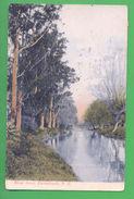 NZ Postcard & STAMP NEW ZEALAND RIVER AVON CHRISTCHURCH Year 1908 - Postcards