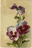 C. Klein -P.F.B. No 1891 - Klein, Catharina