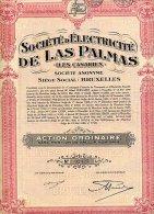 SOCIETE D'ELECTRICITE DE LAS PALMAS ( Iles Canaries ) - Electricité & Gaz