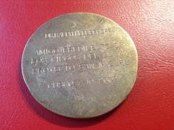 Medaille Bronze Messing Cusco Peru 2002 Proyecto San Miguel Dr. Ralph Kleberhoff Amigo Predilecto De Los Ciegos - Elongated Coins