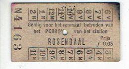 PAYS-BAS - HOLLAND - Ticket Vintage Trein ROSENDAAL - Chemins De Fer