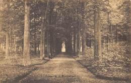 Ostmalle - Malle