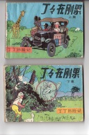 Tintin Au Congo - 2 Volumes En Chinois - Cómics (otros Lenguas)