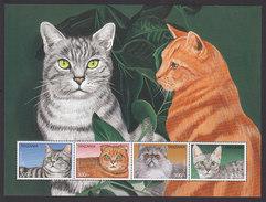 Tanzania, Scott #1521, Mint Never Hinged, Cats, Issued 1996 - Tanzania (1964-...)