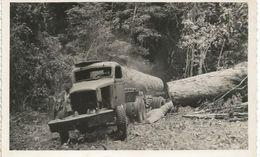 STUDIO PLANTIER-POINTE NOIRE-un Camion Tractant Du Bois - Cars
