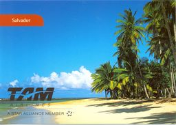 El Salvador - Carte Publicitaire TAM Airlines - A Star Alliance Member - 2867 - Salvador
