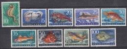 Yugoslavia Republic Sea Fish 1956 Mi#795-803 Mint Hinged - 1945-1992 Socialist Federal Republic Of Yugoslavia