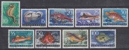 Yugoslavia Republic Sea Fish 1956 Mi#795-803 Used - Gebruikt