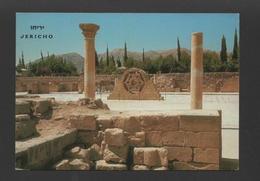 JERICHO HISHAM'S PALACE POSTCARD 1960.years History Archeology PALESTINE ISRAEL - Postcards