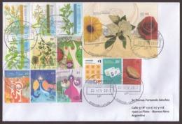 Argentina -  2017 - Lettre - Fleurs - Plantes Médicinales - Fêtes Populaires - Lettres & Documents