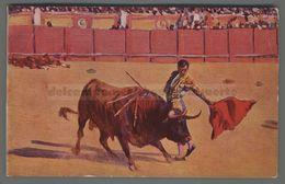 V308 CORRIDA Illustrazione M. BERTUCHI UN PASE NATURAL FP (m) - Corrida