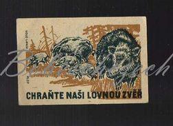 54-166 CZECHOSLOVAKIA 1955 - Protection Of Game Wild Boar Sus Scrofa - Boites D'allumettes - Etiquettes
