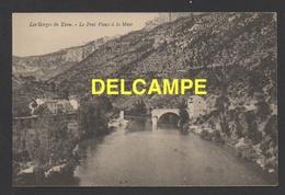 DF / 48 LOZÈRE / GORGES DU TARN / LE PONT VIEUX À LA MUSE - Gorges Du Tarn