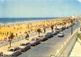 Espagne - Andalousie - Cádiz - Playa De La Victoria - Arribas Zaragoza Nº 2033 - Ecrite - 2897 - Cádiz