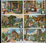 Chromo Liebig Sang. 1036 ITA Animali Venerati ANNO 1912 - Liebig