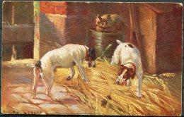1926 Latvia Dogs Samson Art Postcard Limbaschi - Latvia