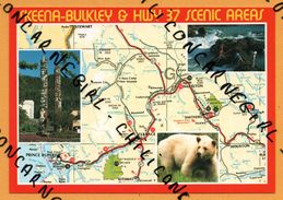 QSL - The Skeena Bulkley & HWY 37 Scenic Areas - Ours Polaire - British Columbia Canada - 1991 - Carte - Radio