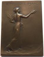 Médaille Bronze. Source De L'état Mondorf Les Bains. Henri Dubois. 40 X 55 Mm - 58 Gr - Professionali / Di Società