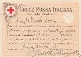 TESSERA SOCIO PERPETUO CROCE ROSSA 1916 (SY105 - Timbri Generalità