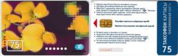 PHONE CARD KAZAKHISTAN  (KAZ2.5 - Kazakhstan