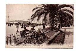 06 - CANNES . PROMENADE DE LA CROISETTE - Réf. N°5684 - - Cannes
