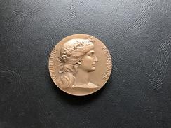 Medaille Dit De Table Protection De La Nature Et De L'Environnement - Medaille D'Honneur De La Pisciculture - Professionnels / De Société