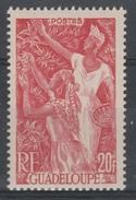 Guadeloupe, Coffee Harvest, 20f., 1947, MNH VF - Guadeloupe (1884-1947)