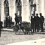 Herve - La Gare (animée, Attelage Chien, Edit Hendrick, 1905) - Herve