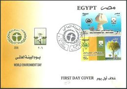 EGYPT 2006 FDC / FIRST DAY COVER World Environment Day - White Desert & Desertification - Egypt