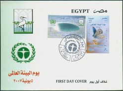 EGYPT 2007 FDC / FIRST DAY COVER World Environment Day ( Climate Change & Sinai Baton Blue ) - Egypt