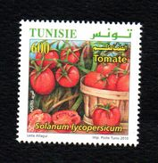 2010-Tunisia/Organic Farming In Tunisia/ Tomato- MNH*** - Agriculture