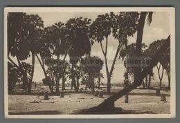 V438 SOMALIA MOGADISCIO PALME DUM FP (m) - Somalia