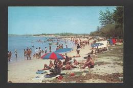 Postcard 1960years ANGOLA ILHA DE LUANDA BEACH - AFRIKA AFRIQUE Xx - Postcards