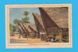 Pc OCEAN LINER ISSUE HOLLAND INDONESIA BATAKLANDEN ASIA - Postcards