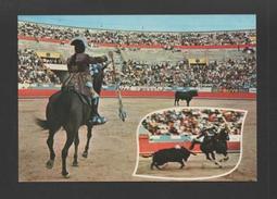 Postcard 1970ys PORTUGAL BULLFIGHT  Horse Bull Toradas Chevaux Cheval Bull - Postcards