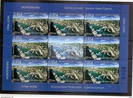 MONTENEGRO 2017,NATUR PROTECTION,CANYON OF RIVER CIJEVNA,RIVER,MNH - Montenegro