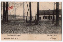 NELS Série 11 N° 297 - HOEYLAERT - WILRIEKENDE  -  Sous-bois Et Serres - Hoeilaart