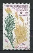 TAAF 1997 N° 220 ** Neuf MNH Superbe Cote 13 € Flore Antarctique Poa Kerguelensis Flora - Ongebruikt