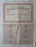 Lot De 18 ACTIONS TITRES - Société Française Des PETROLES De TCHECOSLOVAQUIE: 1920 - Pétrole