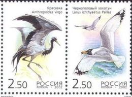 Russia 2002 Kazakhstan Joint Issue Birds Crane Cranes Gull Bird Animal Fauna Pair Stamps MNH Mi 1008-1009 Scott 6709 - Cranes And Other Gruiformes