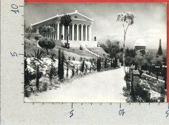 CARTOLINA VG ISRAELE - HAIFA - Mt. Carmel - 10 X 15 - ANN. 1961 - Israël