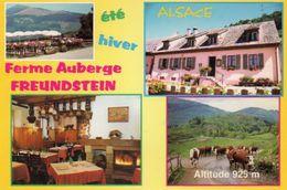 CPSM - Environs De WILLER-sur-THUR (68) - Multi-Vues De La Ferme-Auberge Freundstein Dans Les Années 80 - Francia