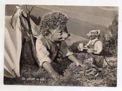 MECKI - So Gefallt Es Mir ! - Viaggiata Nel 1956 - Cartolina Nr. 35 - (FDC6501) - Mecki