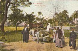 ALEXANDRIA   ---  View Of Sidy Gaber - Alexandrie