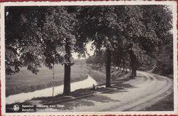 Aarschot Steenweg Naar Diest 1939 (scheurtje - Gekleefd) - Aarschot