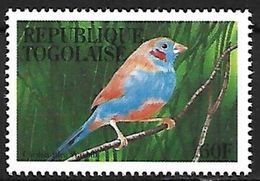 Togo - 1995 - MNH - Red-cheeked Cordon-Blue (Uraeginthus Bengalus) - Zangvogels