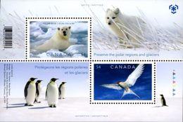 Canada 2009 KANADA Fauna BIRDS POLAR YEAR 1bl MNH** - Preservare Le Regioni Polari E Ghiacciai