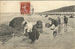TROUVILLE -- La Pêche à La Crevette à Marée Basse                              -- ND 295 - Trouville